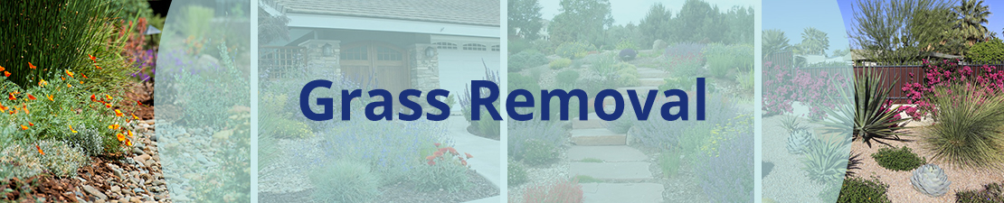 Grass removal rebate